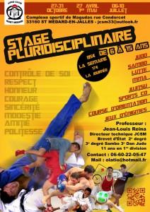 Flyer stage pluridisciplinaire